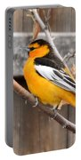 Bullock Oriole Portable Battery Charger