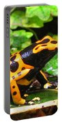 Bumble Bee Poison Frog Portable Battery Charger