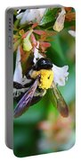 Bumblebee On Abelia Portable Battery Charger
