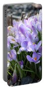 Bunch Of Crocuses Portable Battery Charger