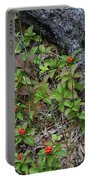 Bunchberry Berries Portable Battery Charger