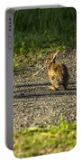 Bunny Eating On The Run Portable Battery Charger