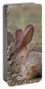 Bunny Encounter Portable Battery Charger