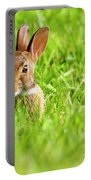 Bunny In Field  Portable Battery Charger