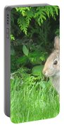 Bunny In Repose Portable Battery Charger