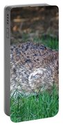 Bunny In The Backyard Portable Battery Charger