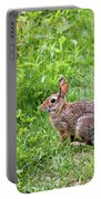 Bunny Rabbit Portable Battery Charger