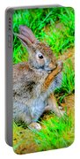 Bunny Secrets Portable Battery Charger