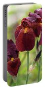 Burgundy Bearded Irises In The Rain Portable Battery Charger by Rona Black