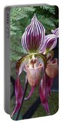Burgundy Orchids With Stripes Portable Battery Charger