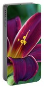 Burgundy Wine Red Daylily Portable Battery Charger