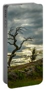 Burmis Tree And Wind Swept Pines Portable Battery Charger