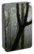 Burnaby Mountain Rainforest Portable Battery Charger