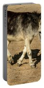 Burro Playing With Safety Cone Portable Battery Charger