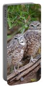 Burrowing Owl Pair  Portable Battery Charger
