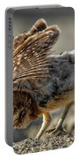 Burrowing Owlet Workout Portable Battery Charger