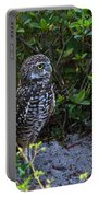 Burrowing Owls At Guard Portable Battery Charger
