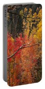 Burst Of Colorado Autumn Color Portable Battery Charger