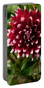 Burst Of Red Portable Battery Charger