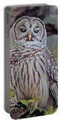 Buschman Park Owl Portable Battery Charger