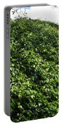 Bush Wall Portable Battery Charger