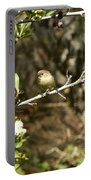 Bushtit On Branch In The Sun Portable Battery Charger
