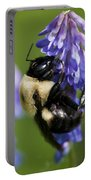 Busy Bumblebee.. Portable Battery Charger