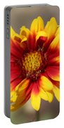 Butter Yellow And Crimson Red Coneflower Portable Battery Charger