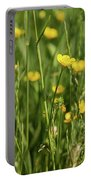 Buttercups And Green Grass At Moore State Park Portable Battery Charger