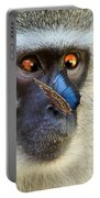 Butterflies And The Vervet  Portable Battery Charger