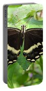 Butterflies Live - 8 Portable Battery Charger