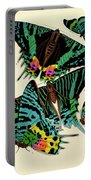 Butterflies, Plate-7 Portable Battery Charger
