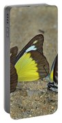 Butterflies Puddling Portable Battery Charger