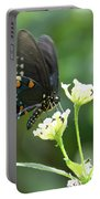 Butterfly 140 Portable Battery Charger