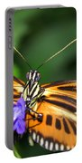Butterfly 2 Eucides Isabella Portable Battery Charger