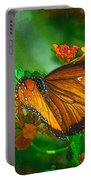 Butterfly 30 Portable Battery Charger
