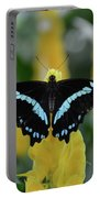 Butterfly Blue Striped Portable Battery Charger