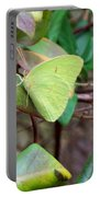 Butterfly Camouflage Portable Battery Charger