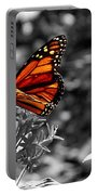 Butterfly Color On Black And White Portable Battery Charger