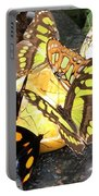 Butterfly Feast  Portable Battery Charger