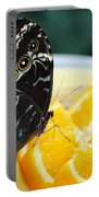 Butterfly Haven Citrus Portable Battery Charger