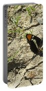 Butterfly On Cracked Ground Portable Battery Charger