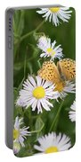 Butterfly On Fleabane Portable Battery Charger