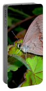 Butterfly On Geranium Leaf Portable Battery Charger