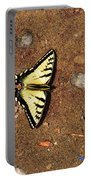 Butterfly On The Sand Two  Portable Battery Charger