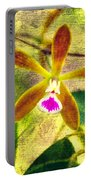 Butterfly Orchid - Encyclia Tampensis Portable Battery Charger