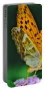 Butterfly Pose Portable Battery Charger