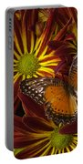Butterfly Resting On Chrysanthemums Portable Battery Charger