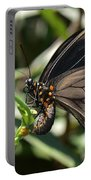 Butterfly Surprises Portable Battery Charger