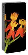 Butterfly Weed Portable Battery Charger